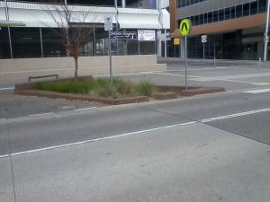 WSUD in the concrete that is Childers Street Canberra Photo Marghanita da Cruz 9  June 2014
