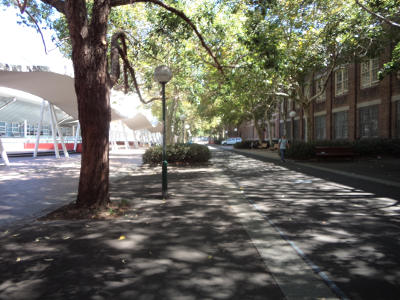 20180129-pedestrian-cycle-street-ultimo-tafe-29jan2018.jpg