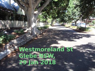 20180129-westmorelandst--glebe-29jan2018.jpg